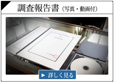 調査報告書(写真・動画)