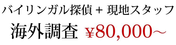 バイリンガル探偵 現地スタッフ 海外調査 80,000円〜